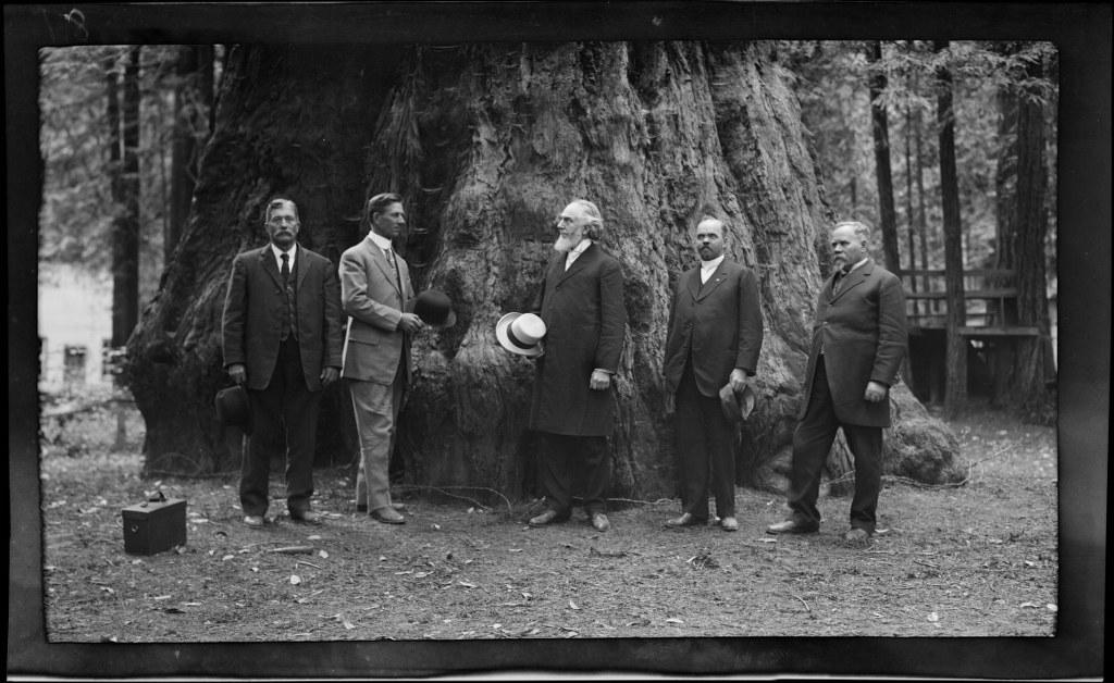 I34 - 1911, June 24 - Santa Cruz, CA, Grove Of Tall Trees 1024x628